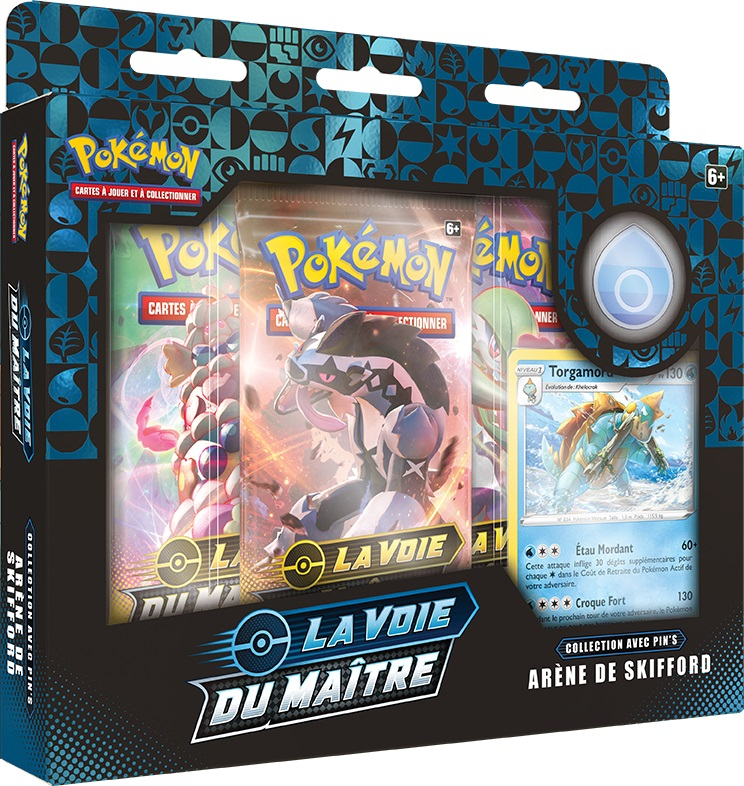 pokemon_tcg_champion_s_path_pin__collection_hulbury_gym_fr