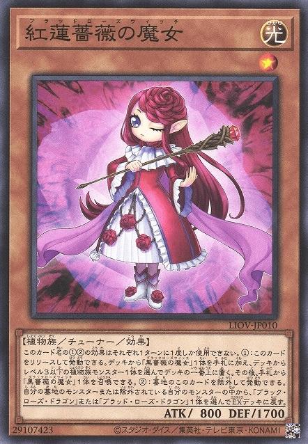 witchofthebloodrose-liov-jp-c