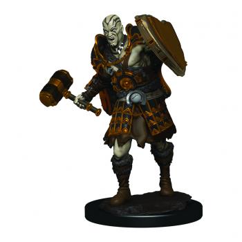 Boite de D&D Icons of the Realms Premium Figures: Male Goliath Fighter