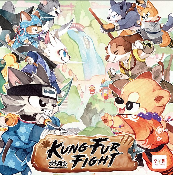 Boite de Kung fur Fight